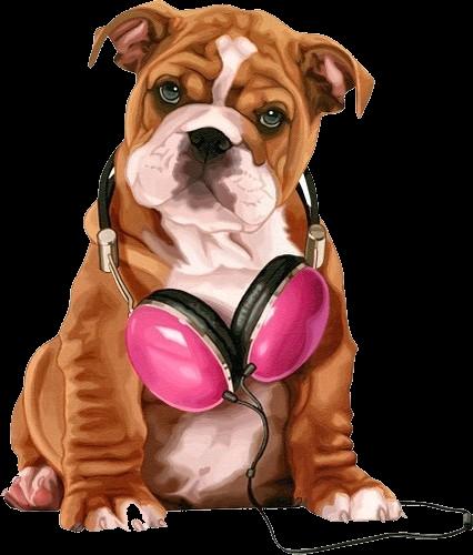 Сублимация собака бульдог с наушниками