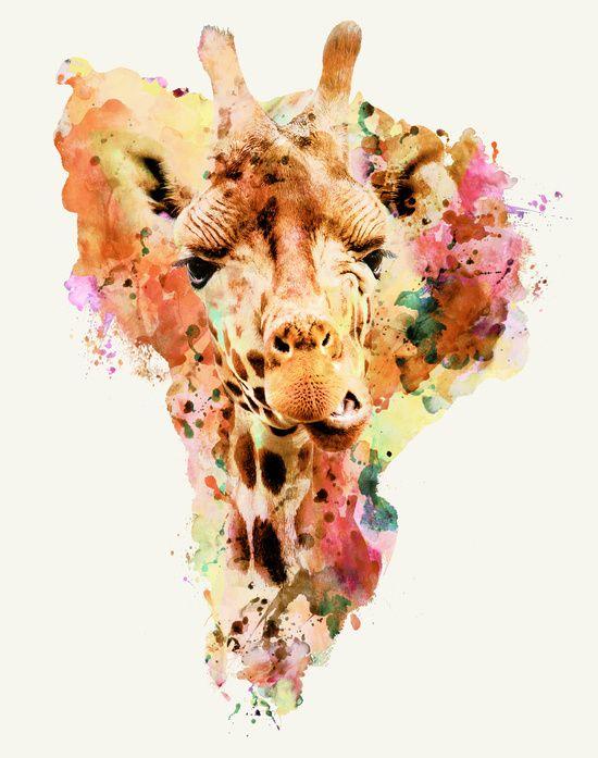 Сублимации жираф