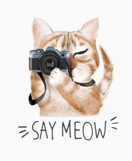 Сублимация кот фото