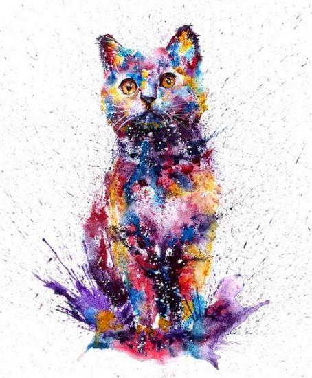 Сублимации кот акварель