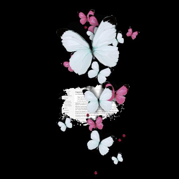 Сублимация бабочки 12