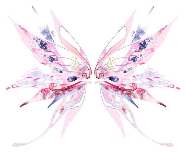 Сублимация бабочка пудра