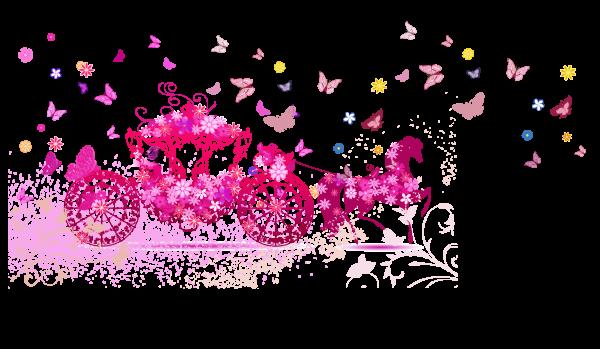 Сублимация карета бабочки